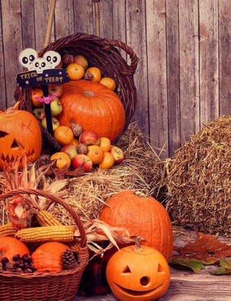 Хэллоуин и урожай